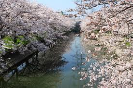 兵庫県高砂市の家庭教師.jpg