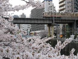 東京都品川区の家庭教師.jpg