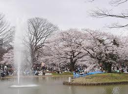 東京都(渋谷区、新宿区、目黒区、世田谷区、中野区)の家庭教師