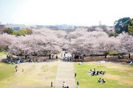 横浜市緑区の家庭教師.jpg