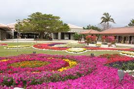 沖縄の観光スポットと家庭教師