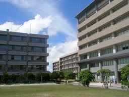 琉球大学の家庭教師